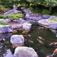 japanese_garden_backgrounds_26