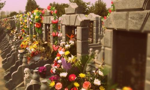 kapų lankymo diena-001